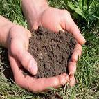 Soil143x143