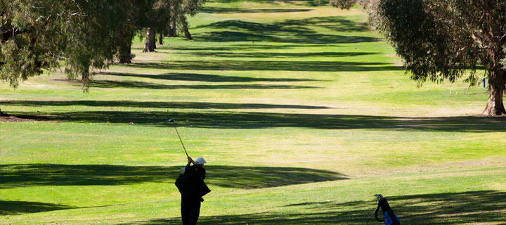 Golf-in-Blayney