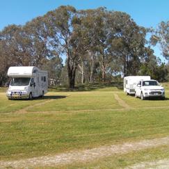 Lyndhurst-campground-243x243